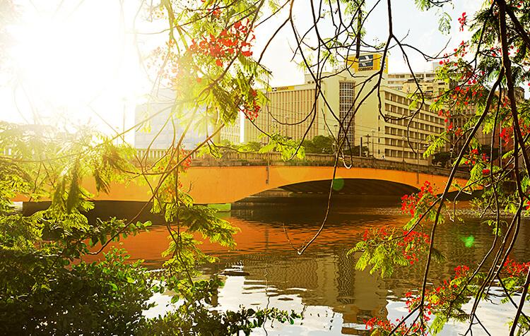 Ponte Duarte Coelho